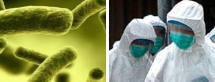 DL Coronavirus: novità per il non profit